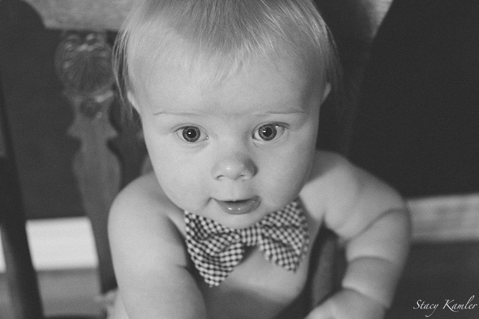 6 month old in bowtie