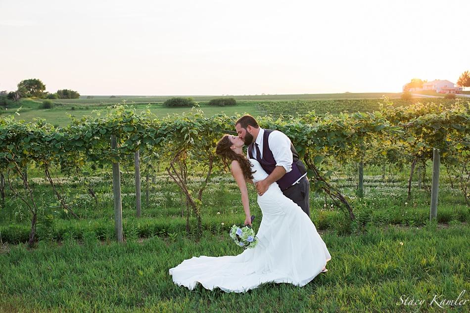 Wedding Wings | Kendall Wedding Soaring Wings Vineyard Stacy Kamler Photography