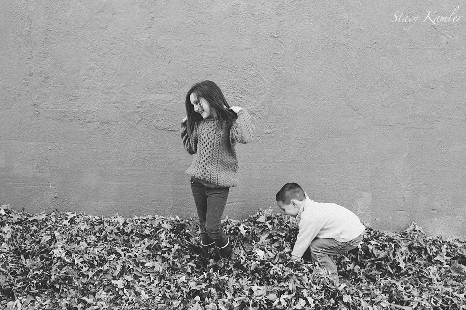 fall leaves for family photos