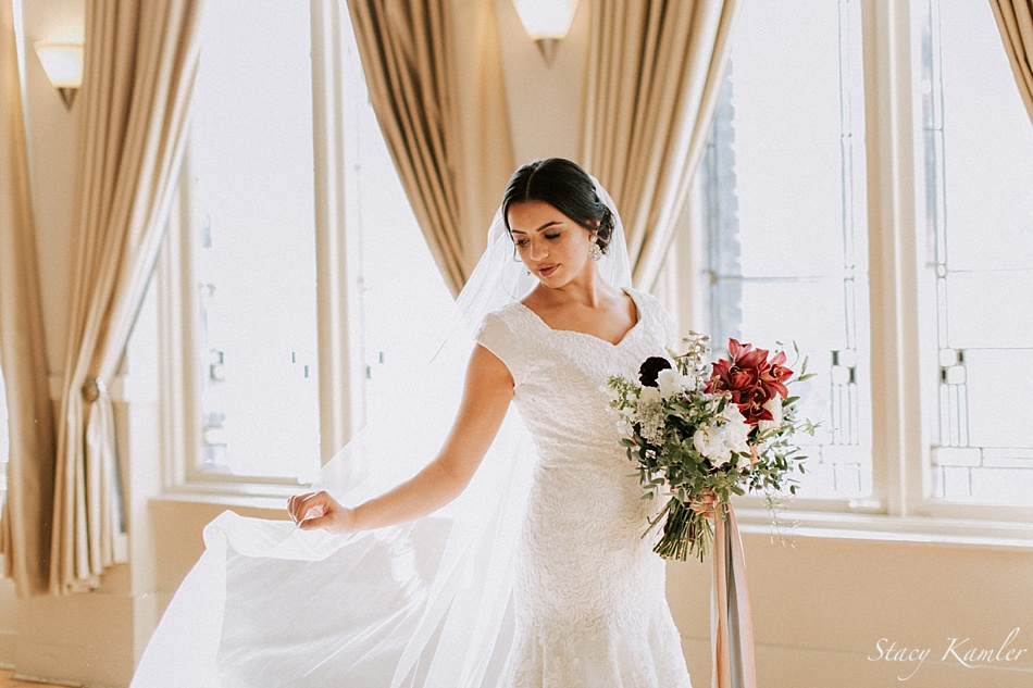 Cathedral length veil with Lace cap sleeve dress