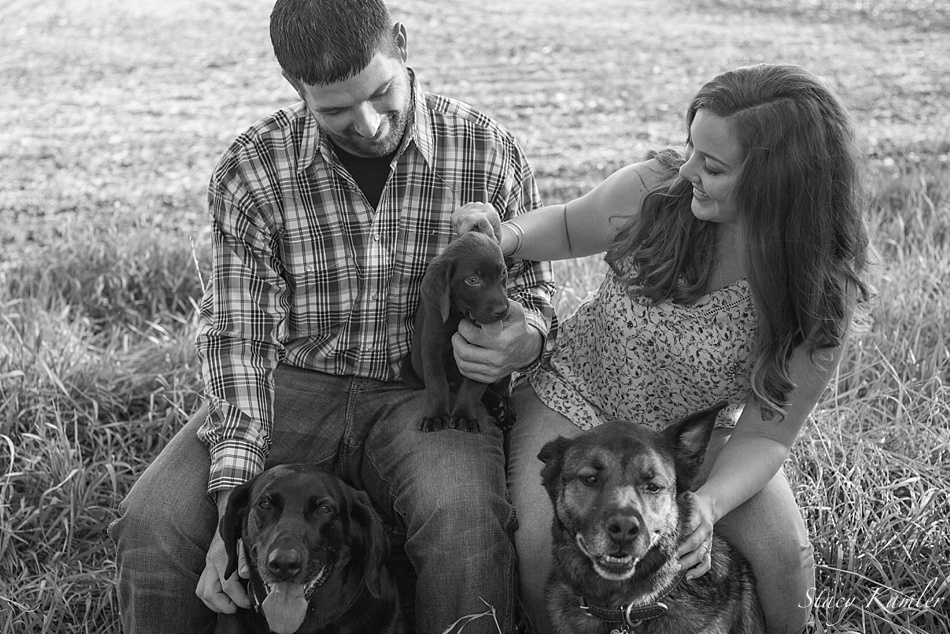 Doggie love during the engagement session