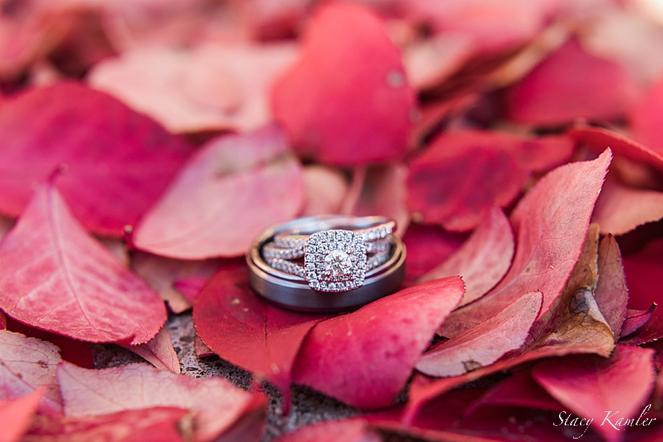 Wedding rings on red leaves for fall