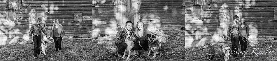 Farm Engagement session with dogs