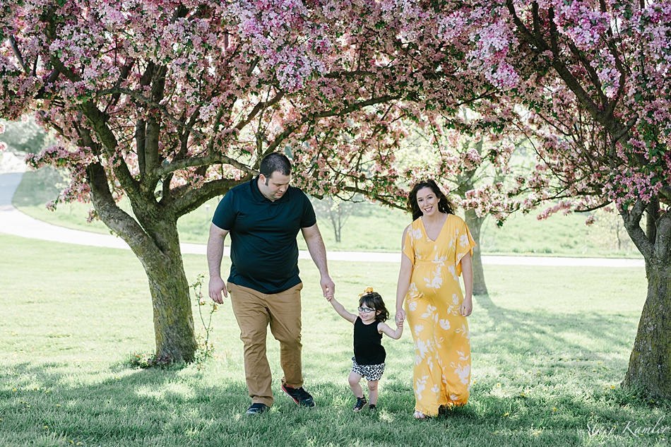 Family Maternity Session with two year old under purple trees