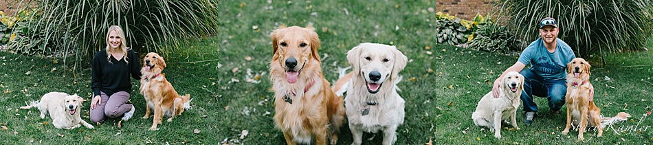 Family Photos with our Golden Retrievers