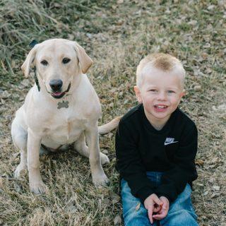 Dog and a Boy three year old photos