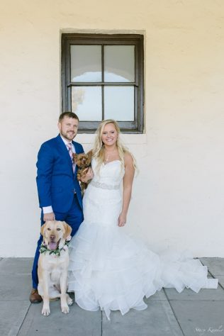 Bride and Groom with their puppies